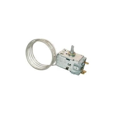 Termostat A13-0552/077B-6756 (C00259148)