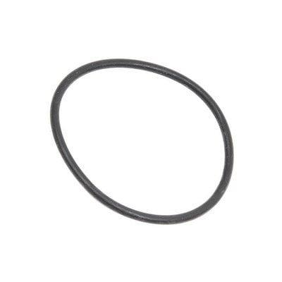 Przednia uszczelka pompy zmywarki (1520292101)
