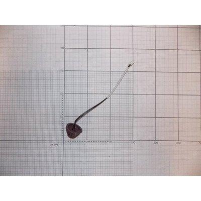 Czujnik temperatury (1030940)