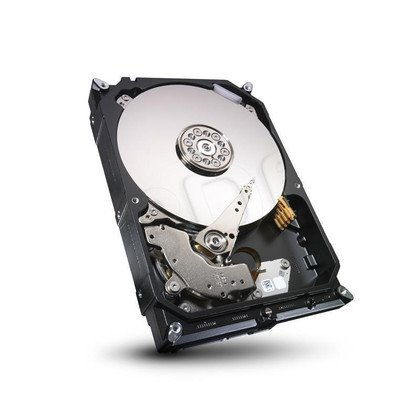 Dysk HDD Seagate ST4000VN000 4000GB SATA III 64MB