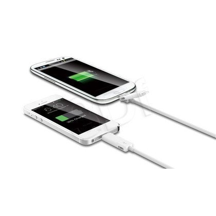INNERGIE KABEL MAGICABLE DUO 0,79M LIGHTNING + MICRO USB ACC-S70AW RA