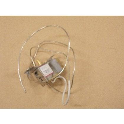 Termostat (1020328)