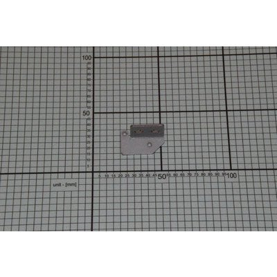 Element blokady obudowy (1024018)