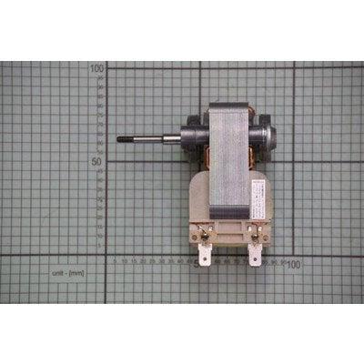 Silnik wentylatora (1034205)
