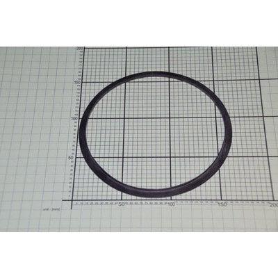Uszczelka płyty PGIN_palnika dużego Sha75 (8068853)