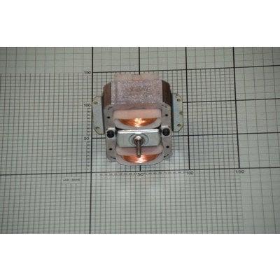 Silnik 1001842