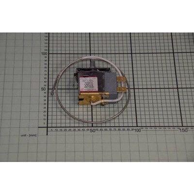 Termostat WDF26-EX (1037819)