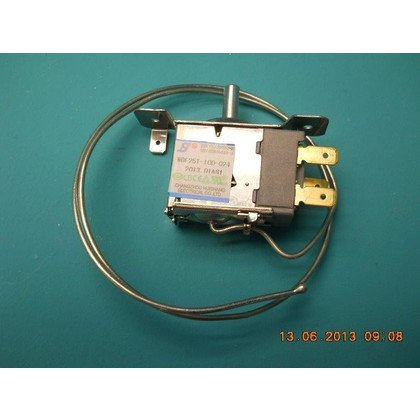 Termostat WDF25T-100-024 (1023566)