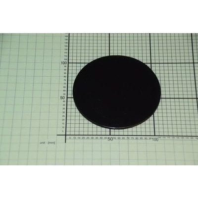 Zaślepka zyki /E100 (1012832)