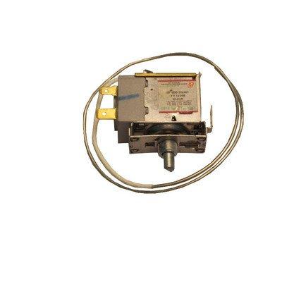 Termostat (1023503)