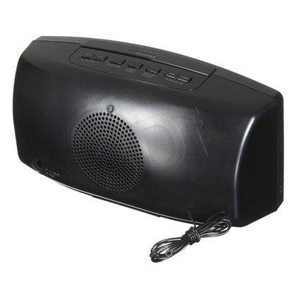 Radiobudzik Philips AJ3400/12 srebrny