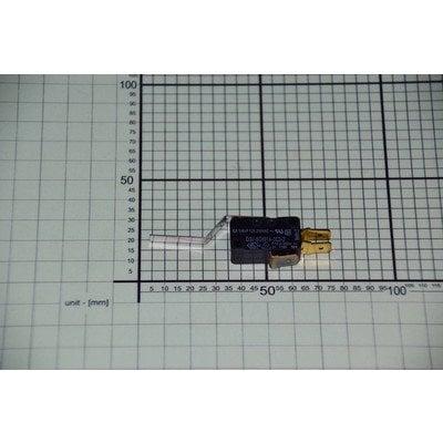 Mikroprzełącznik (1013147)