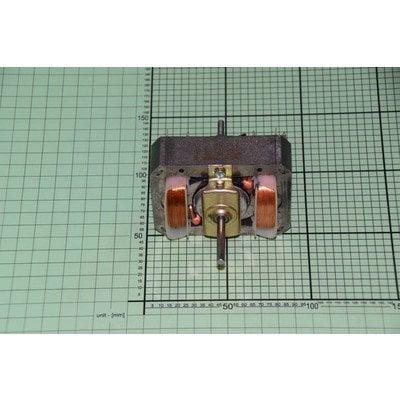 Silnik 220-230v;50hz;100 W (1001075)