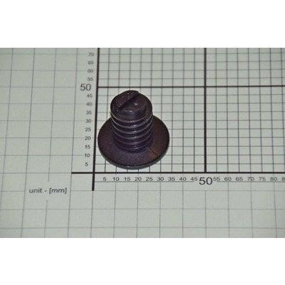 Śruba szkieletu E601.00/00.00.33C 30 mm (8068239)