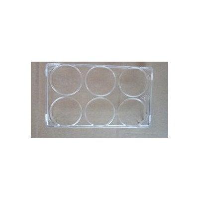 Pojemnik do jaj 6 przeźroczysty (1037253)