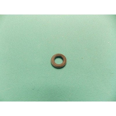 O-ring (1009561)