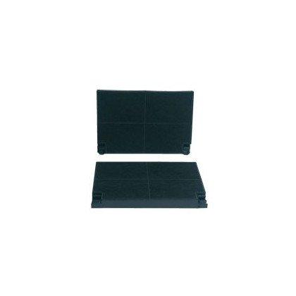 Filtr węglowy do AHS2AM 2szt (C00043058)