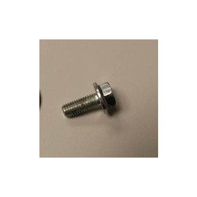 Śruba 8x29 (koła pasowego) 1032063