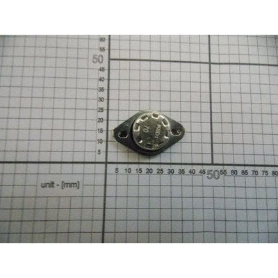 Termostat magnetronu (1008363)