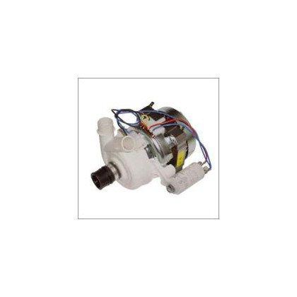 Pompa myjąca DG6145W (C00083478)