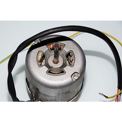 Silnik (1004436)