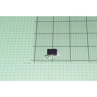 Mikrowłącznik (1033083)